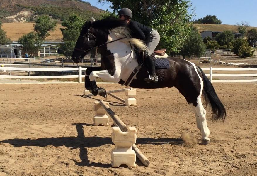 Edgar Lara Jumping