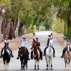 Why REC (Recreational Equestrian Coalition) Matters