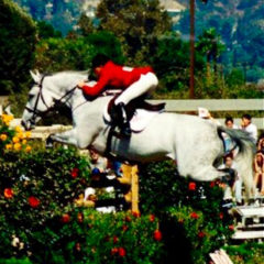 Equine Benefits – Achieving Excellence