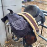 tbar-w-saddle