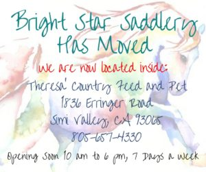 bright-star-new-1