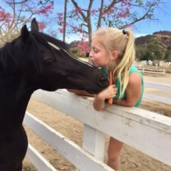 "THE GOOD HORSE – Loving ""Jack"" Pony of the Month for May"