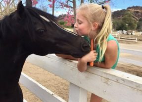 """THE GOOD HORSE – Loving """"Jack"""" Pony of the Month for May"""