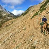 Gillian Larson – Taking the Long Way Home