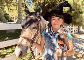 Lovely Lola – The GOOD HORSE for October
