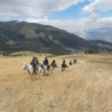 Equine Benefits: Linda Ballou hits the trails in Ecuador