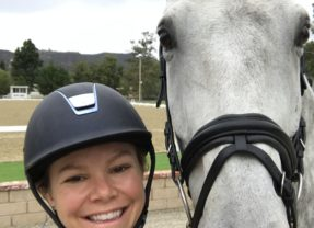 """Evan"" – December's GOOD HORSE"