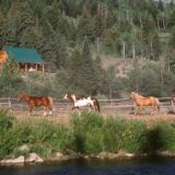 Time Out in the Tetons – By Linda Ballou